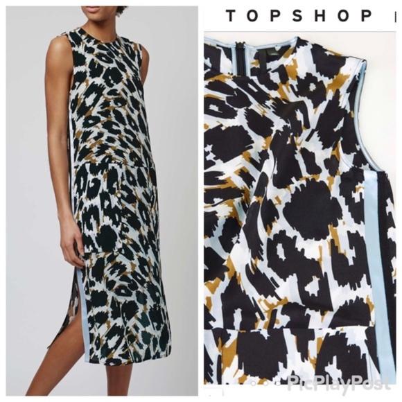 28e467b8388 Top Shop Leopard Print 100% Silk Midi Dress. M 5b802bb1aaa5b8d01f454829